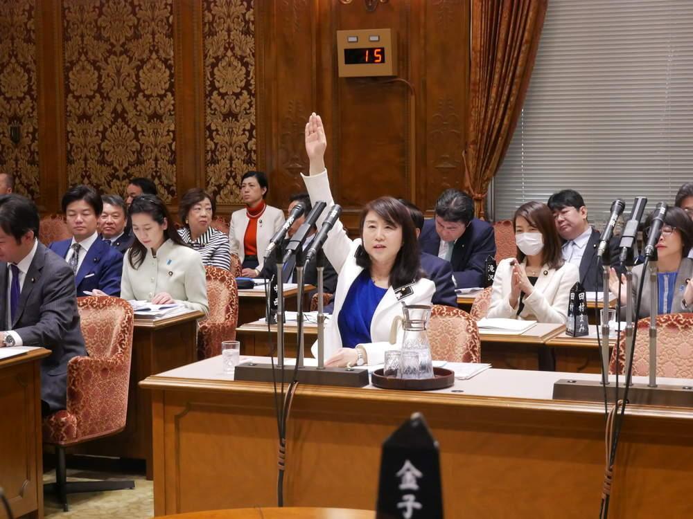 令和2年3月26日(木) 「参議院予算委員会」一般質疑