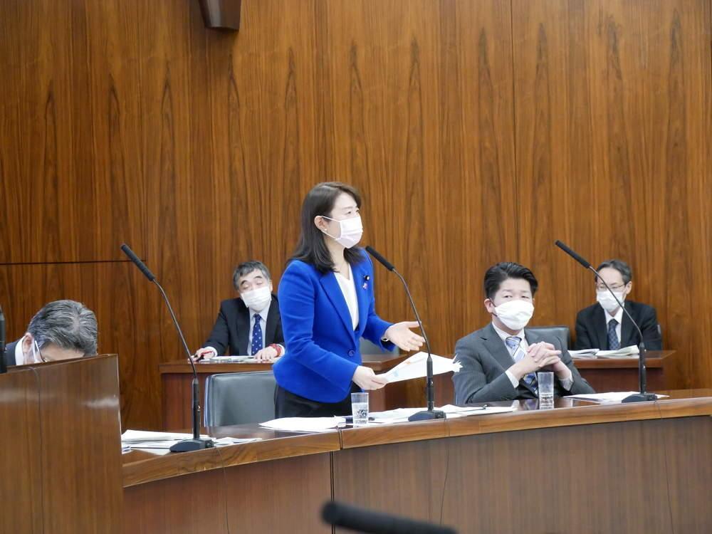 令和2年4月16日(木) 内閣委員会 一般質疑