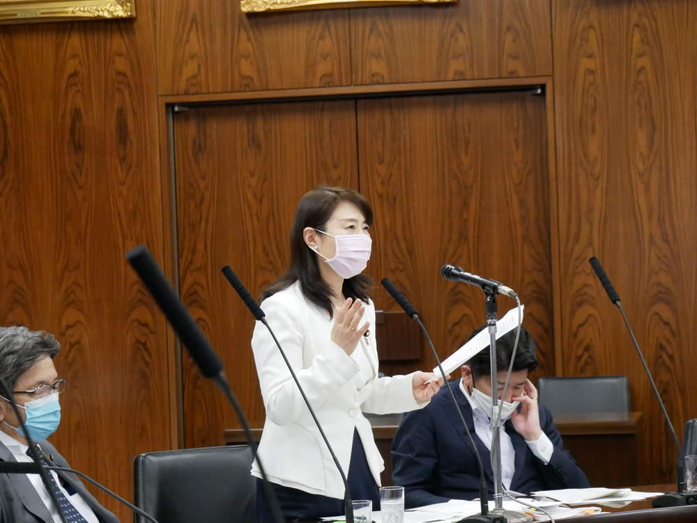 令和2年5月28日(木) 内閣委員会 一般質疑