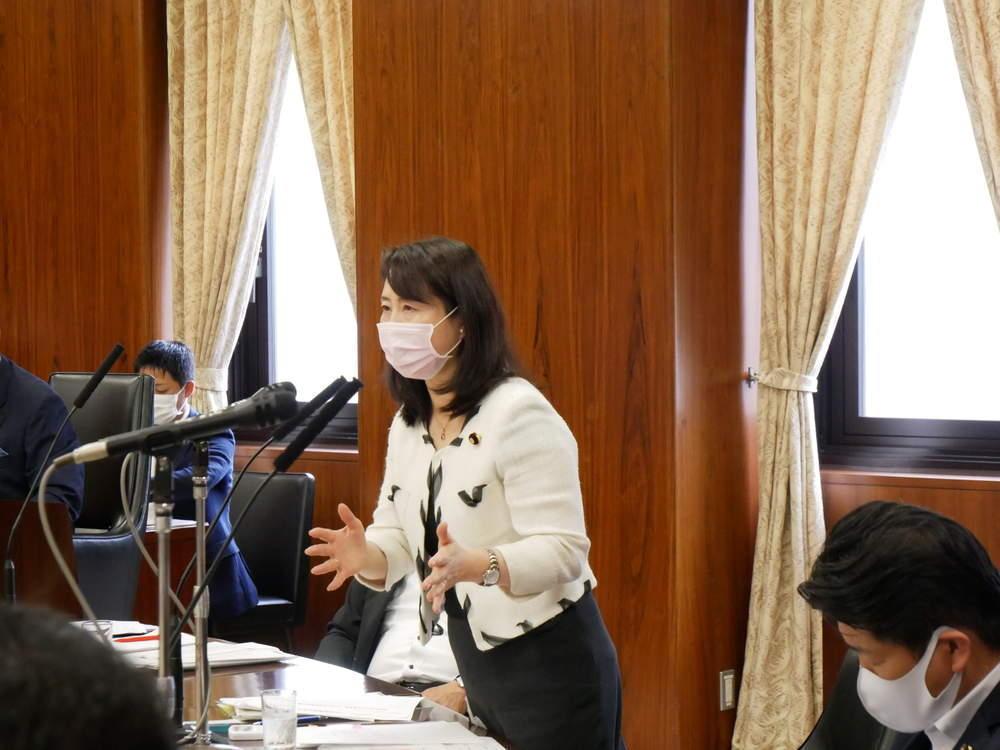 令和2年8月27日(木) 内閣委員会 閉会中審査