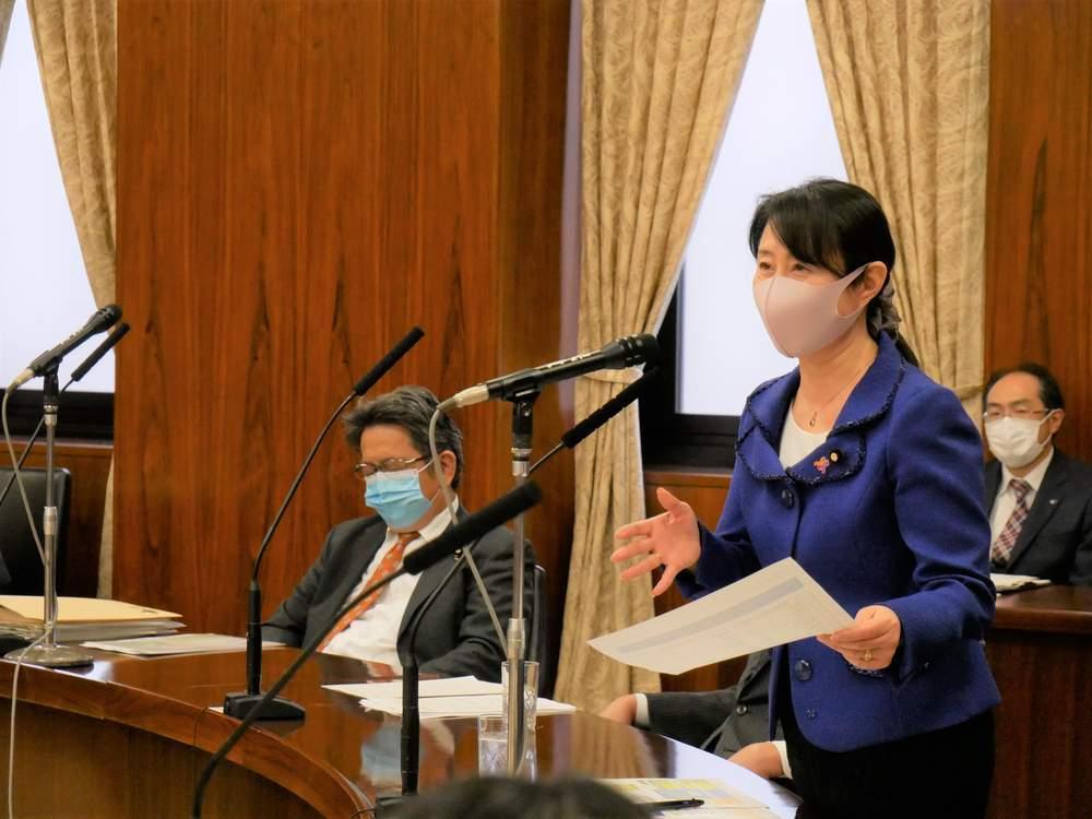 参議院内閣委員会(2020年10月8日)閉会中審査