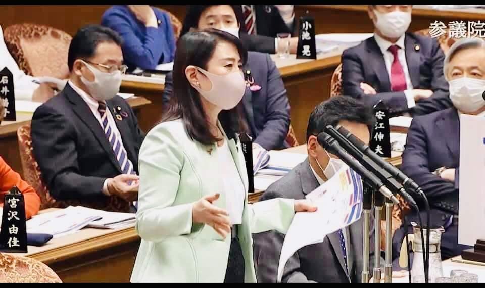 参議院予算委員会(2020年11月6日)