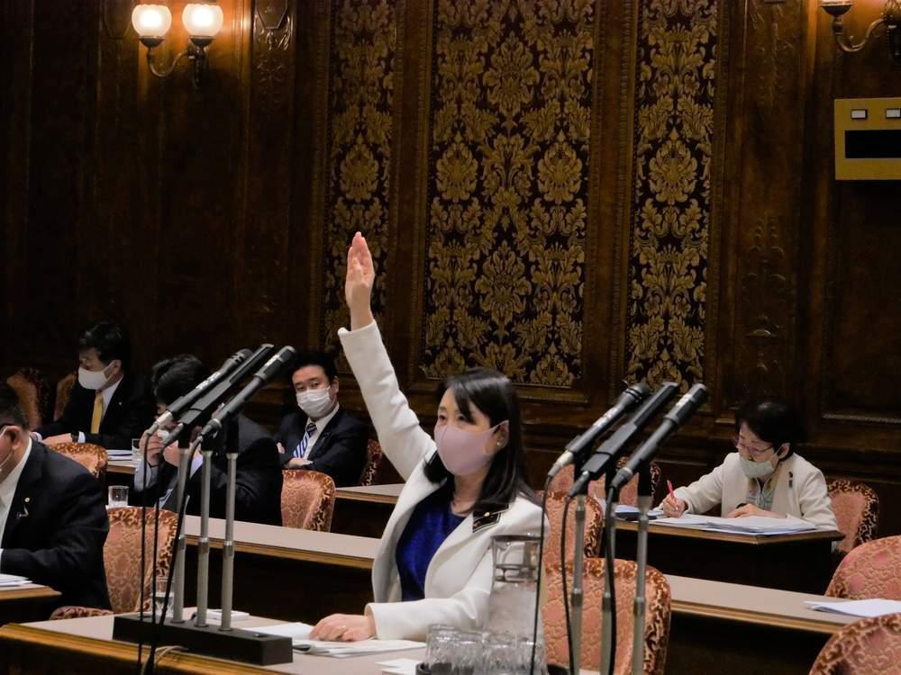 参議院内閣委員会(2020年11月17日)