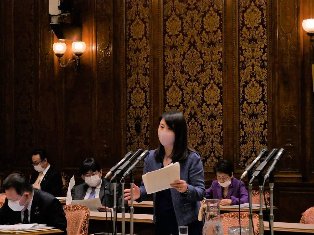 参議院内閣委員会(2020年11月26日)