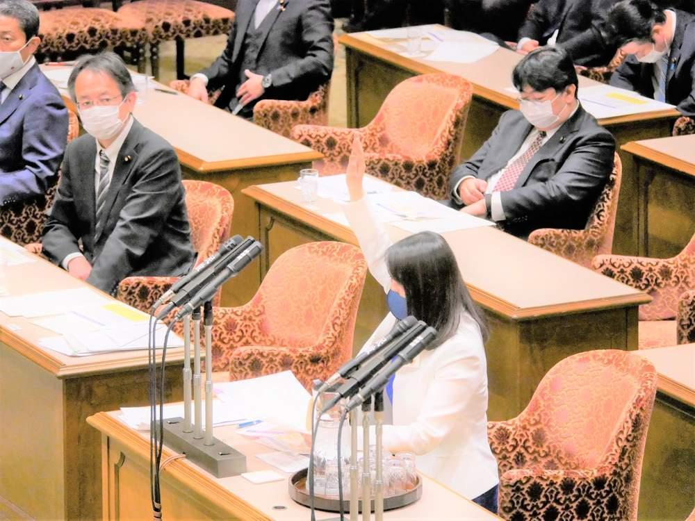 参議院内閣委員会(2020年12月1日)