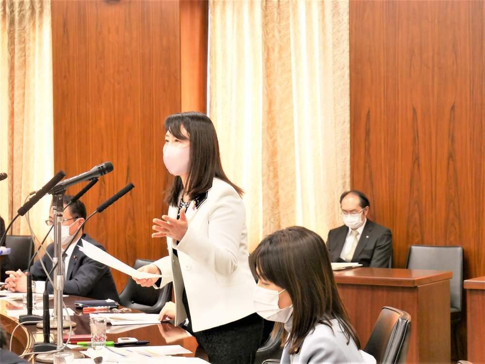 参議院内閣委員会(2021年1月14日)