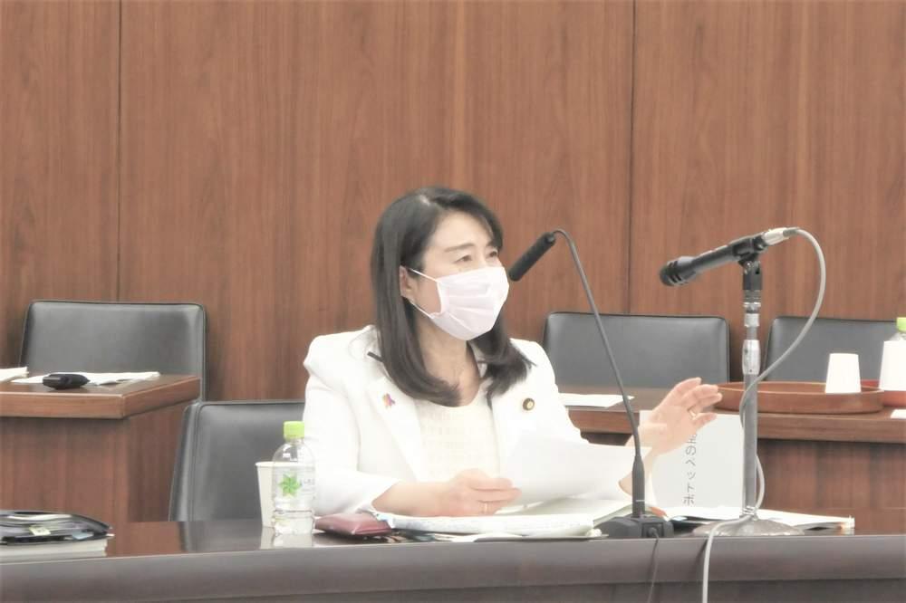 参議院内閣委員会 参考人質疑(2021年2月2日)