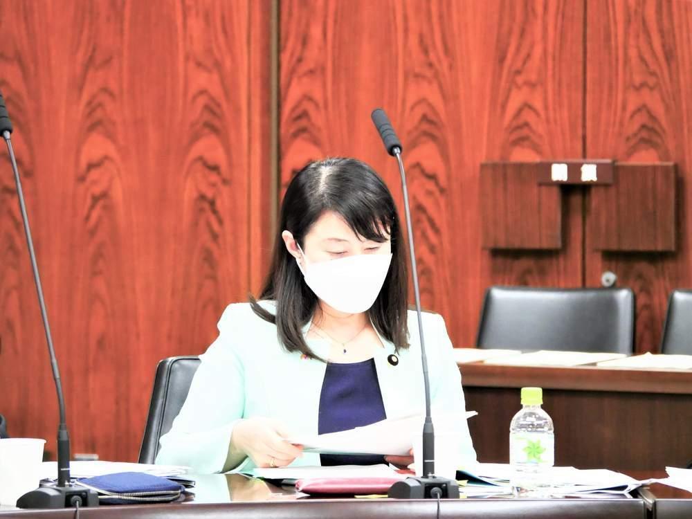 参議院内閣委員会(2021年3月25日)