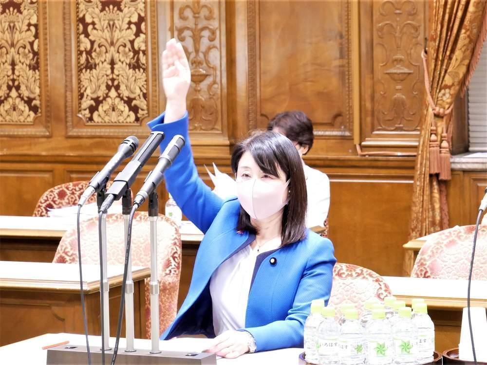 参議院内閣委員会(2021年4月20日)