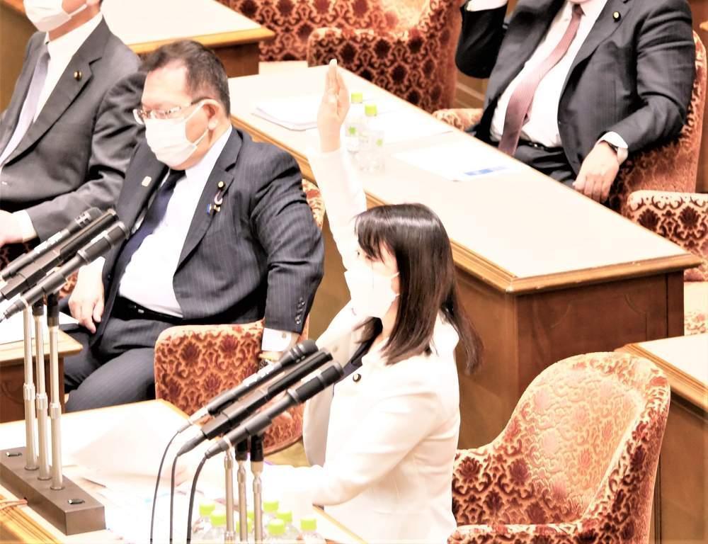 参議院内閣委員会(2021年4月22日)