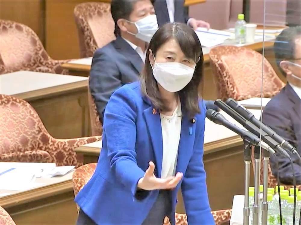 参議院内閣委員会(2021年5月11日)