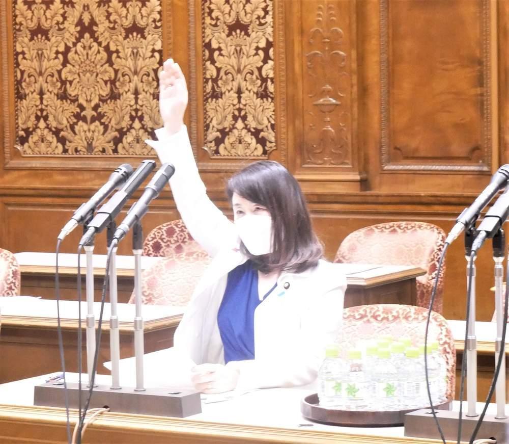 参議院内閣委員会(2021年5月13日)
