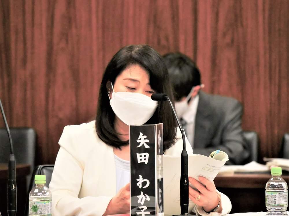 憲法審査会(2021年5月19日)