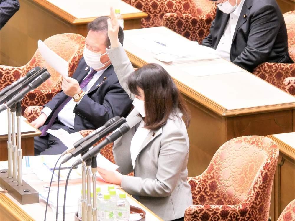 参議院内閣委員会(2021年5月20日)