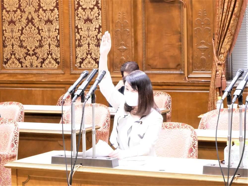 参議院内閣委員会(2021年6月1日)