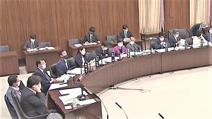 憲法審査会(2021年6月2日)