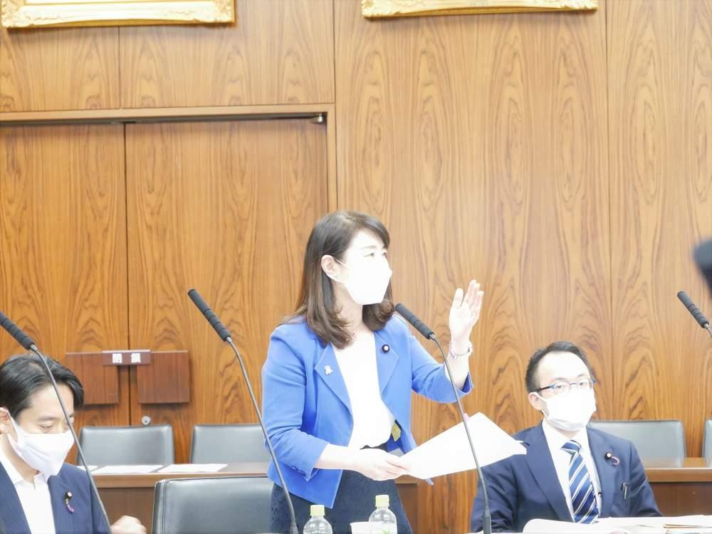参議院内閣委員会(2021年6月3日)