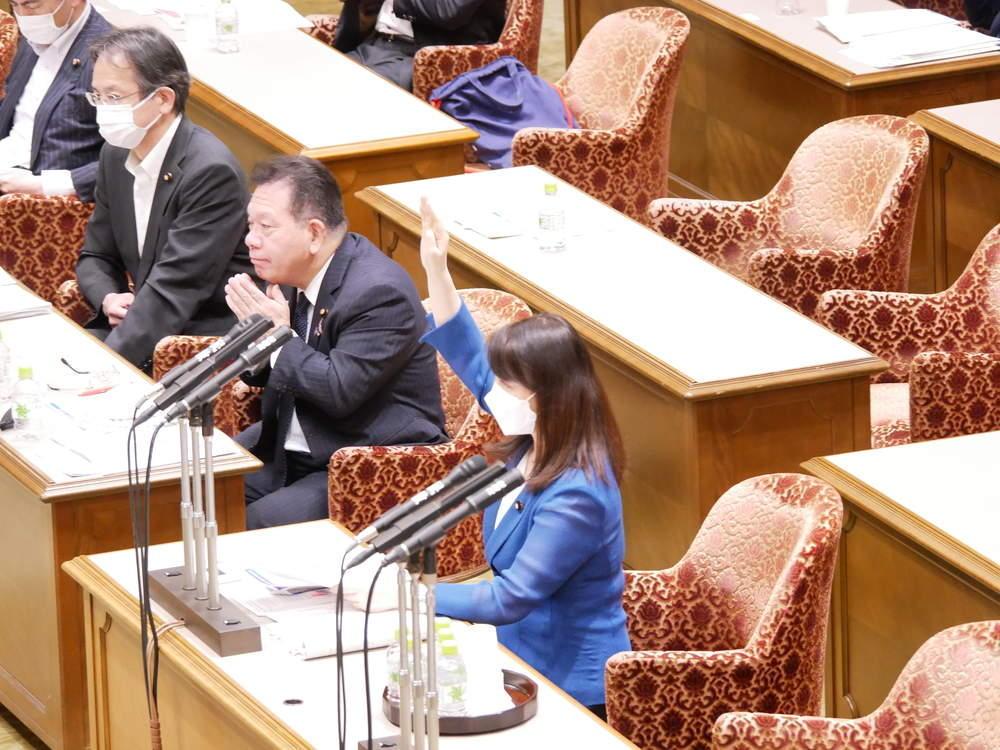 参議院内閣委員会(2021年6月10日)