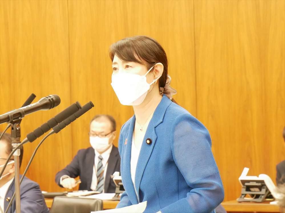 参議院内閣委員会(2021年6月15日)