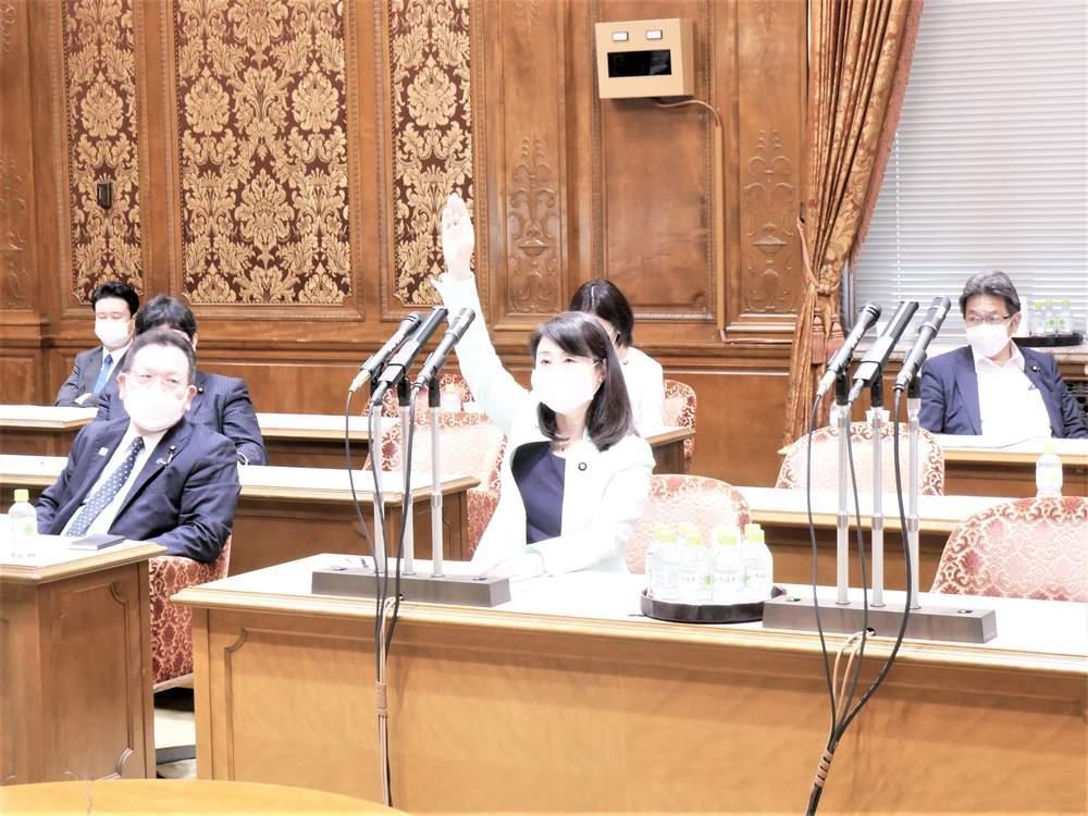 参議院内閣委員会(2021年7月15日)