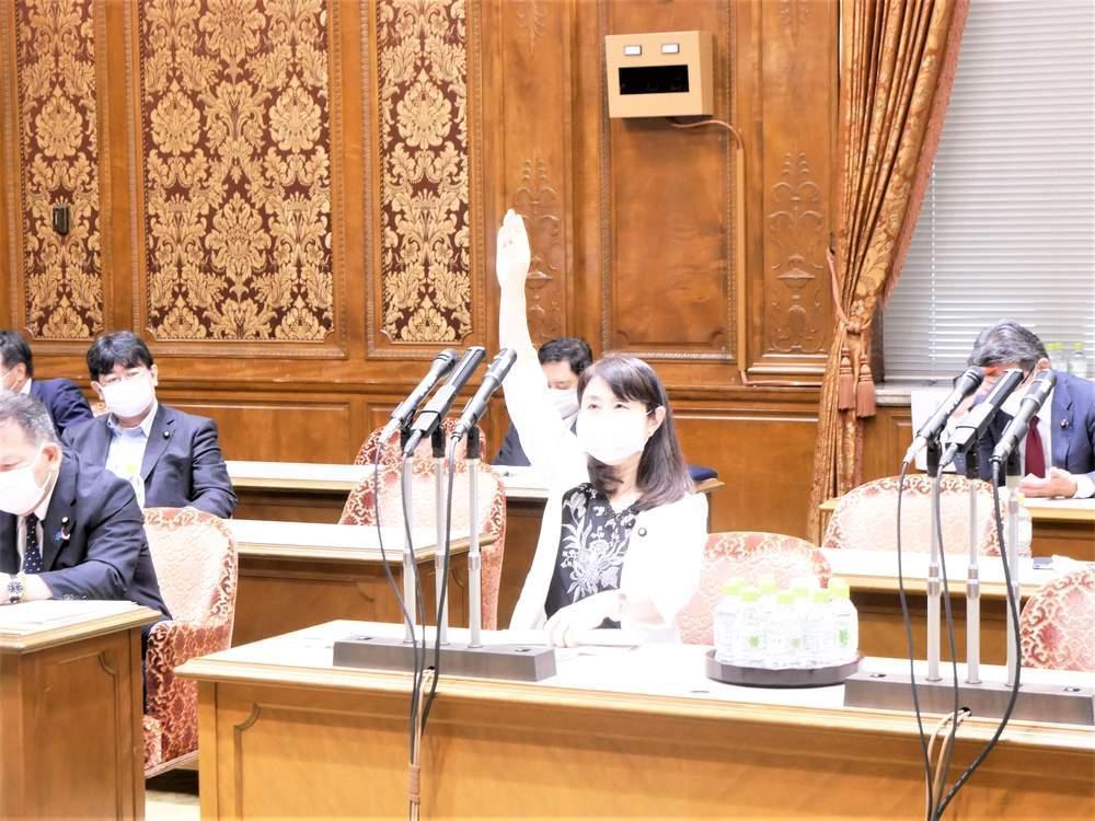 内閣委員会(2021年8月19日)